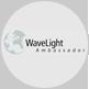 Wavelight-Users Meeting